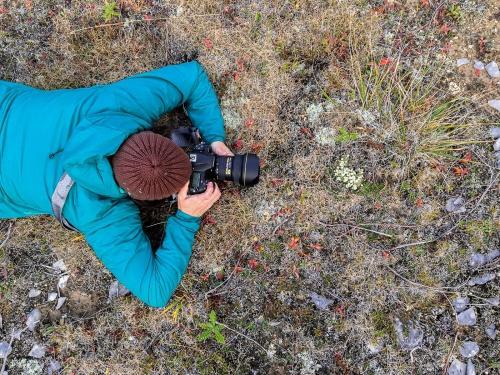 Isabelle Michaud photographe à l'île d'Anticosti